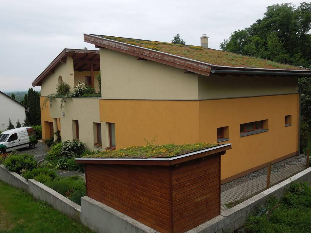 Zöldtetőépítés - Leányfalu Családiház