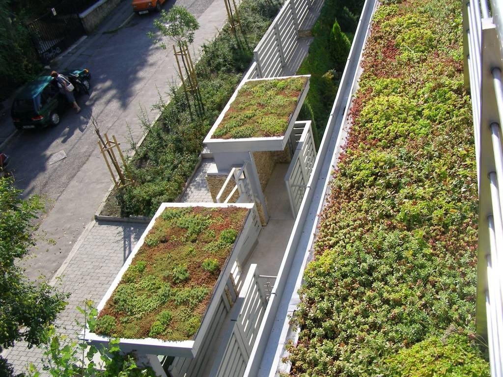 Zöldtetőépítés - Társasház