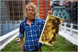 Mike Densham méhész