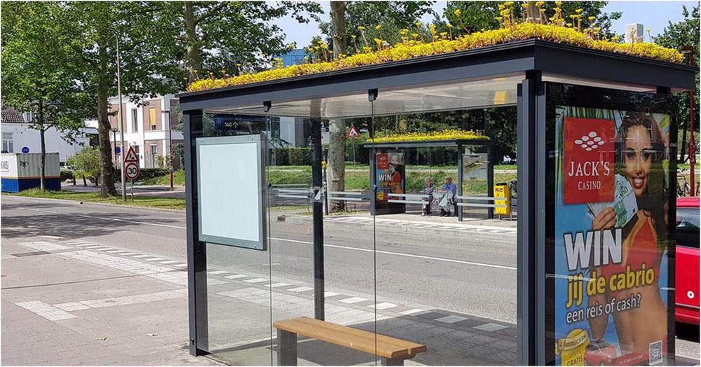 Buszmegállókon extenzív zöldtető