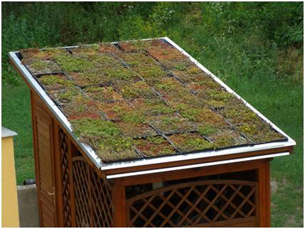 Szerszám tárolón Fito Tech tálcás extenzív zöldtető