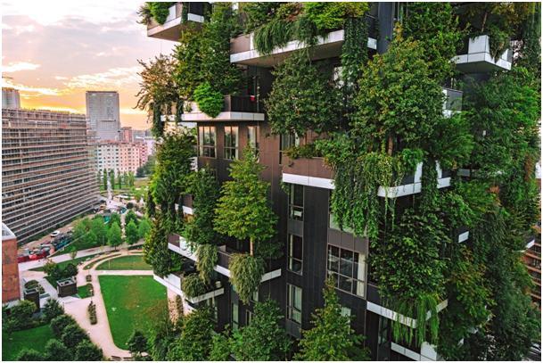 Függőleges, vertikális kertek