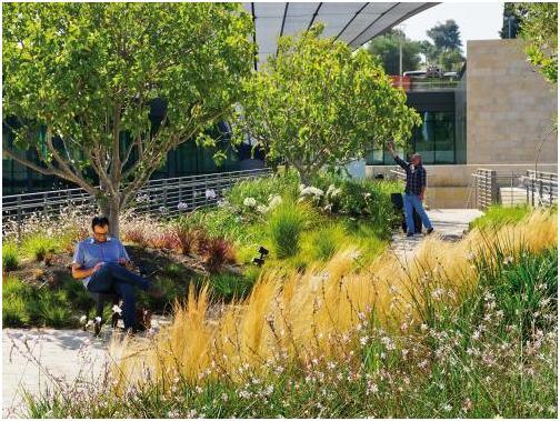 A zöldtetők a pihenés és regenerálódás színhelyei is lehetnek, azonban már a tervezéskor érdemes eldönteni a funkciót.