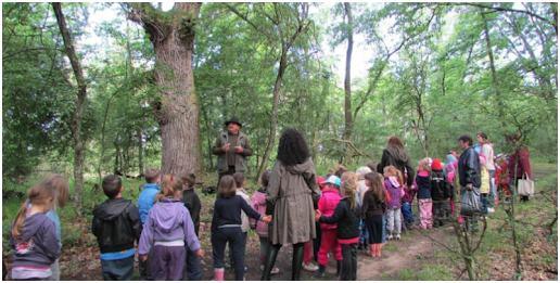A természet és a tanulás közötti összefüggés jól ismert. Számos helyen a zöldtetők helyettesíthetik a természetet, így a fenti összefüggés itt is helytálló